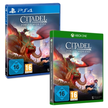 Citadel Forged with Fire, PS4/Xbox One