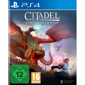 Citadel Forged with Fire, Sony PS4